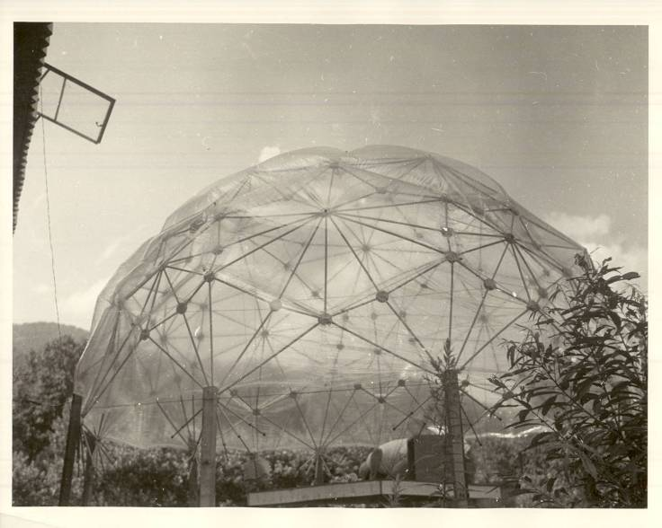 Buckminster_Fullers_Autonomous_Dwelling_Facility_Dome_at_Black_Mountain_College.jpg
